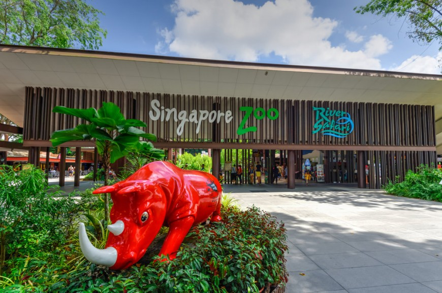 الحدائق الإستوائية سنغافورة