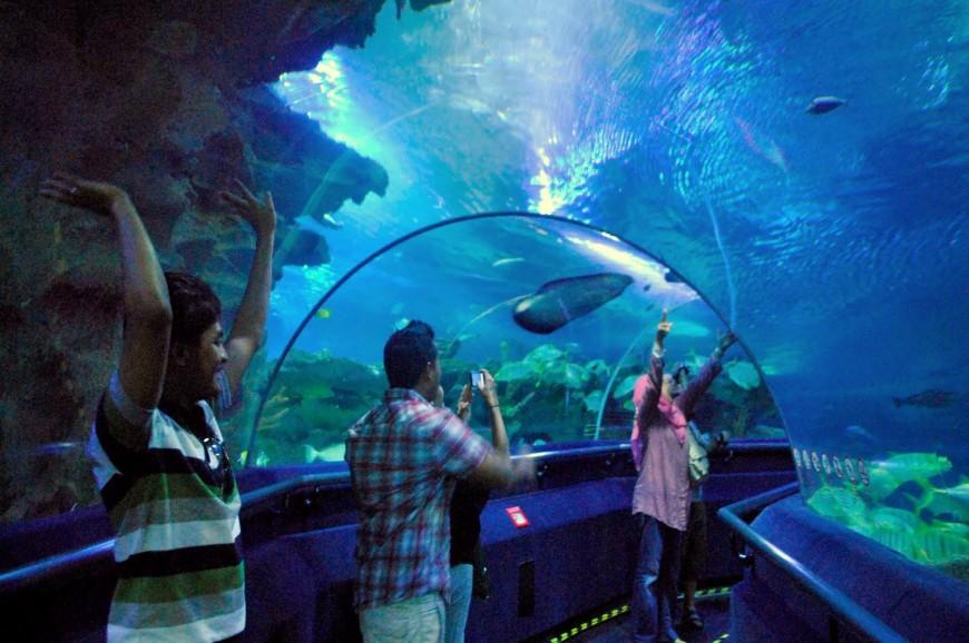 عالم تحت الماء اكورايا كوالالمبور بماليزيا