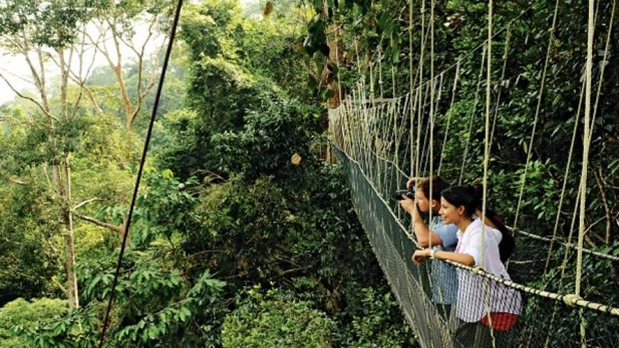 رحلات المغامرات في ماليزيا