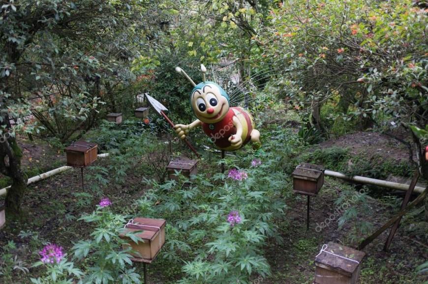 مزارع عسل النحل في الكاميرون هايلاند بماليزيا