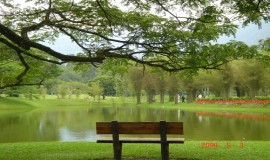 بحيرة بردانا النباتية كوالالمبور ماليزيا
