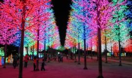 مدينة الأضواء آي سيتي سيلانجور ماليزيا