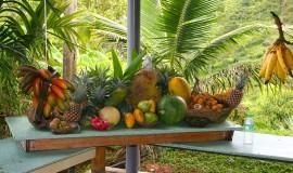 حديقة الفواكه بينانج ماليزيا